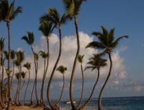 República Dominicana quiere avanzar en turismo de salud