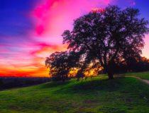 Los consejos para disfrutar del turismo rural sostenible