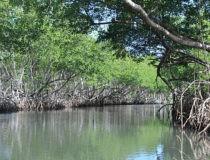Los lugares increíbles para conocer en República Dominicana