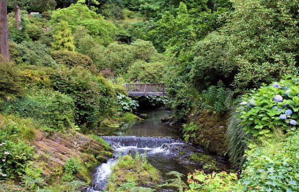 Gales busca atraer a más turistas japoneses