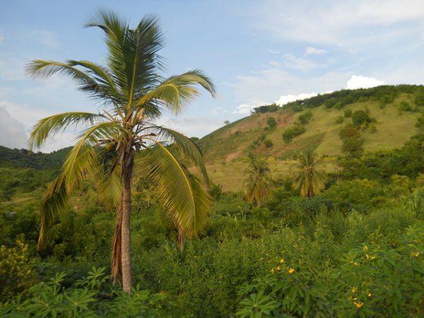 Haití participará en feria dentro de República Dominicana