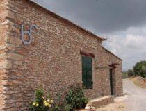 Bodega Flors, una visita al corazón del vino de Castellón