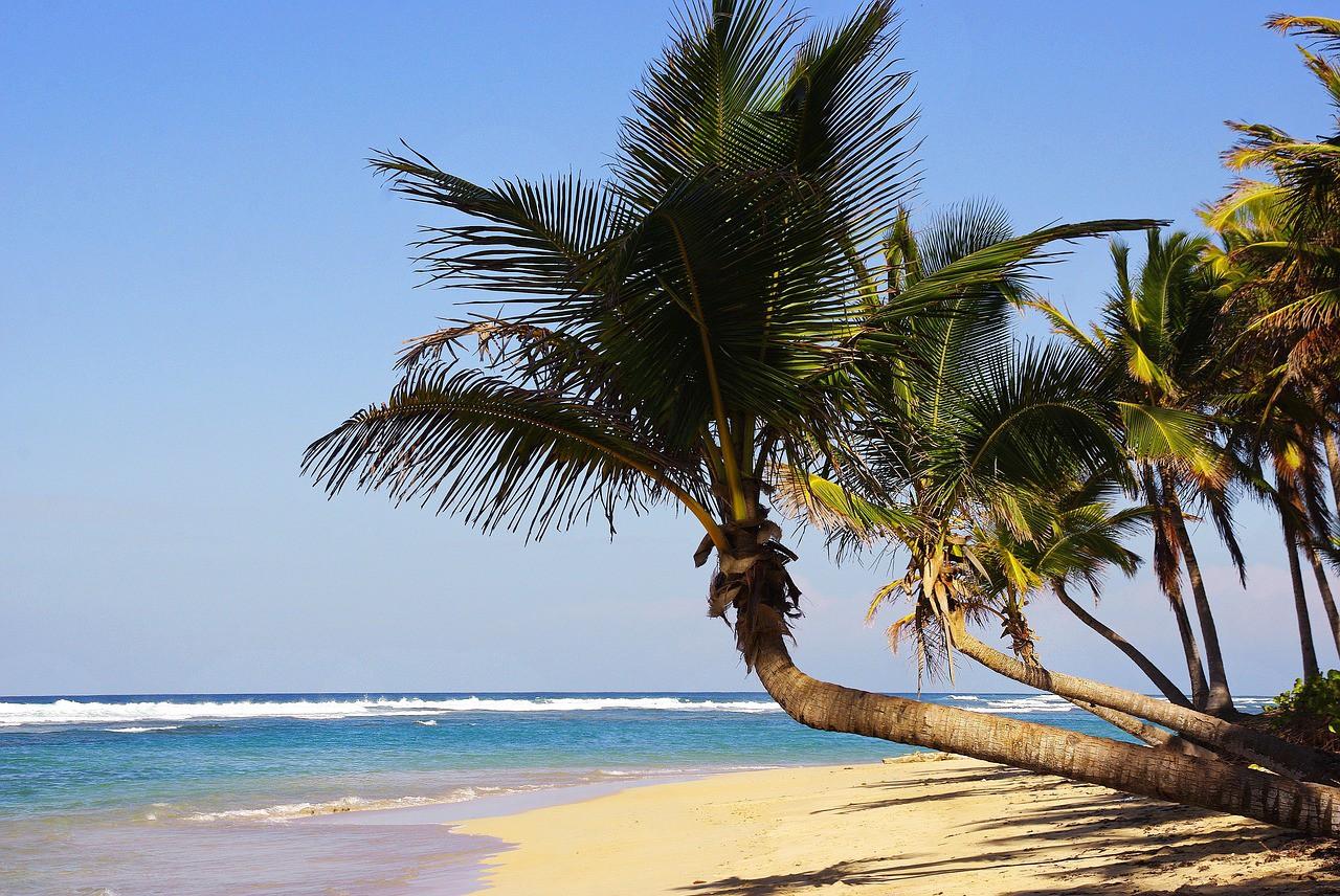 Más vuelos entre Reino Unido y Punta Cana