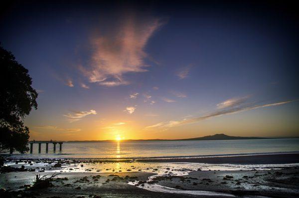 Las mejores visitas para realizar en Auckland