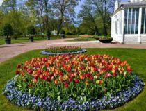 Gotemburgo, un destino sostenible