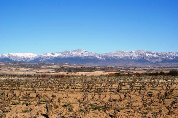 La Rioja es uno de los destinos preferidos por los españoles para una escapada