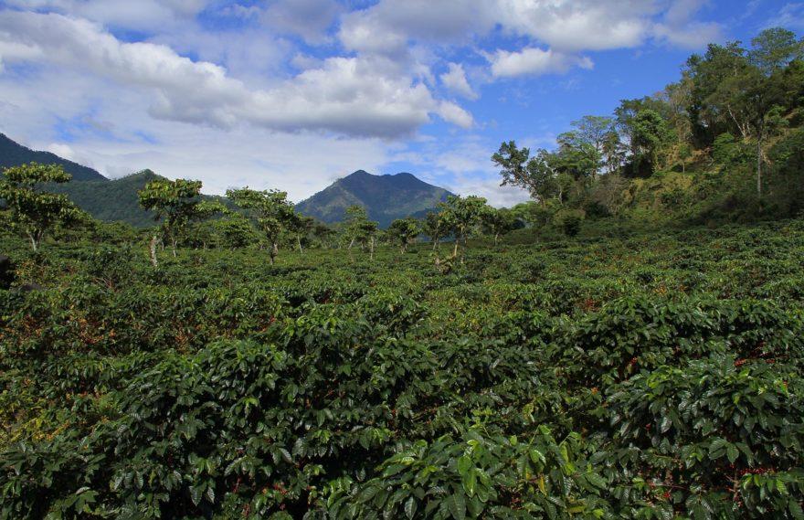 El turismo sostenible, meta de Guatemala para 2018