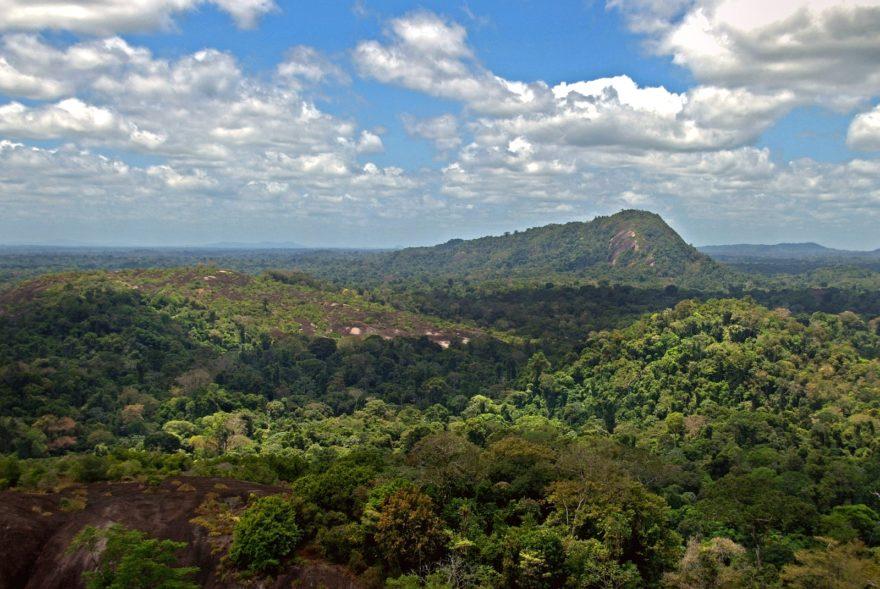 Surinam quiere avanzar en materia de turismo