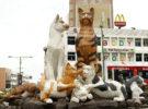 Conoce el curioso museo del Gato en Malasia
