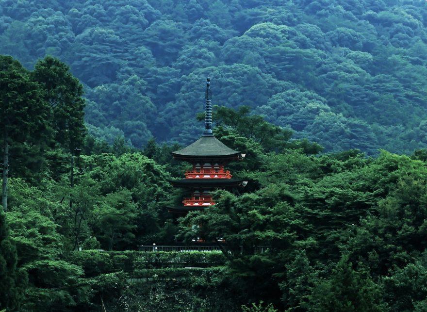 Las experiencias para disfrutar de un viaje especial en Japón