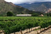Las 5 mejores bodegas para alojarse en Argentina