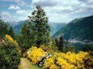 Jardín Botánico San Grato, un paseo por la naturaleza de Suiza