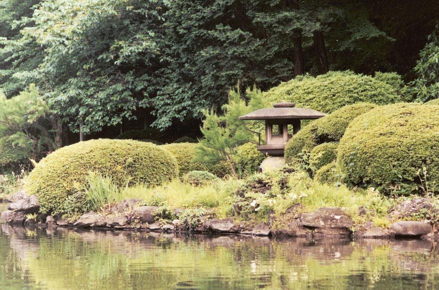 Jardín Nacional Shinjuku Gyoen, un rincón natural para descansar y desconectar en Tokyo