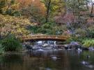 Parque Setagaya en Viena, un parque japonés para disfrutar en Austria