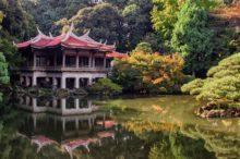 Propuestas alternativas para disfrutar de Tokio en verano: Bonsáis, arte digital y festivales de luz y color