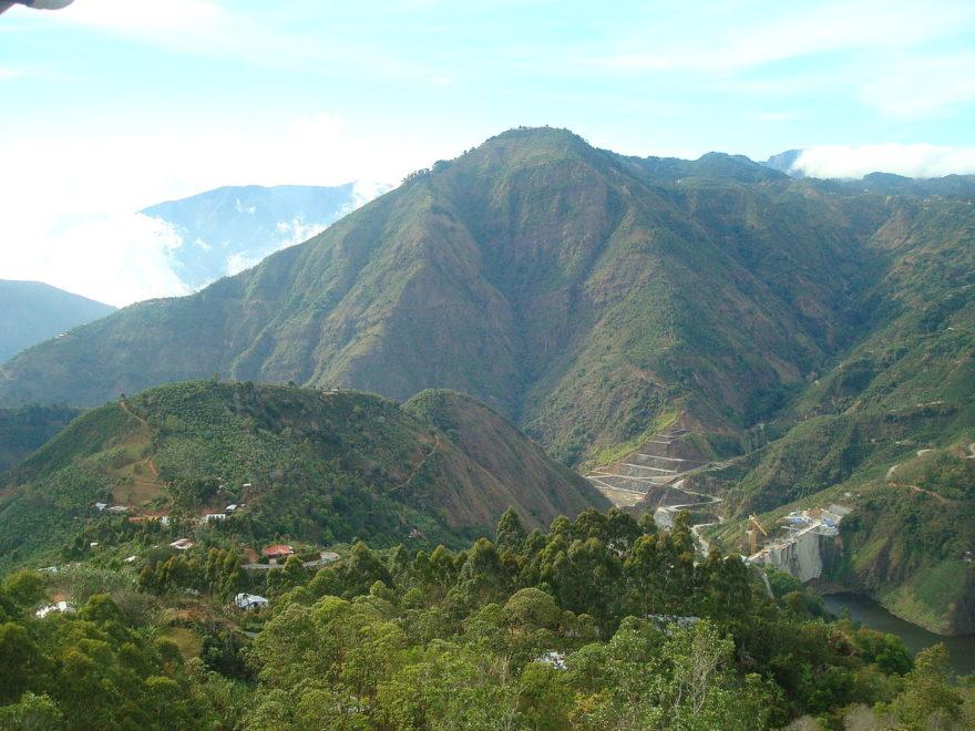 Visitar una plantación de café, una alternativa para disfrutar de la naturaleza en Costa Rica