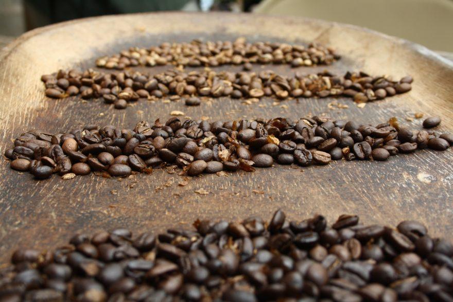 Circuito del Café, una nueva propuesta para conocer Panamá