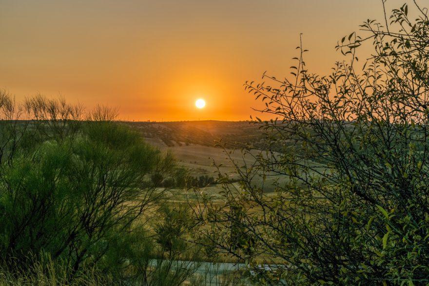 Conoce la Ruta del Vino de La Mancha, un nuevo atractivo turístico