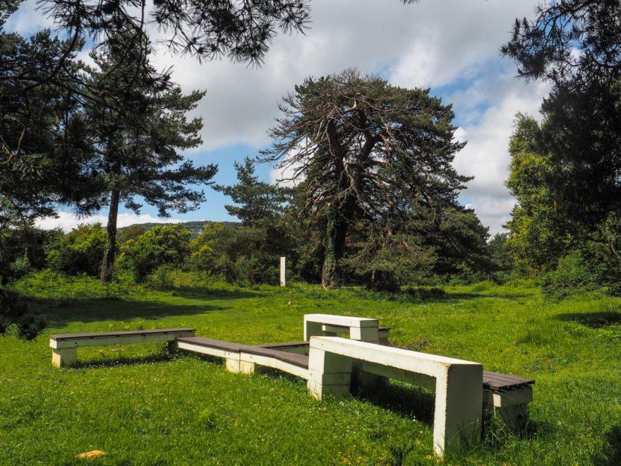 San Zadornil, la metropli verde