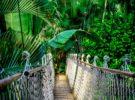 Conoce los nuevos Parques Nacionales en Tailandia