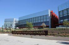 El Museo de la Evolución Humana de Burgos, parte de la experiencia de Atapuerca