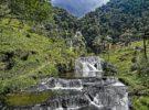 Destinos naturales de Colombia que deberías conocer