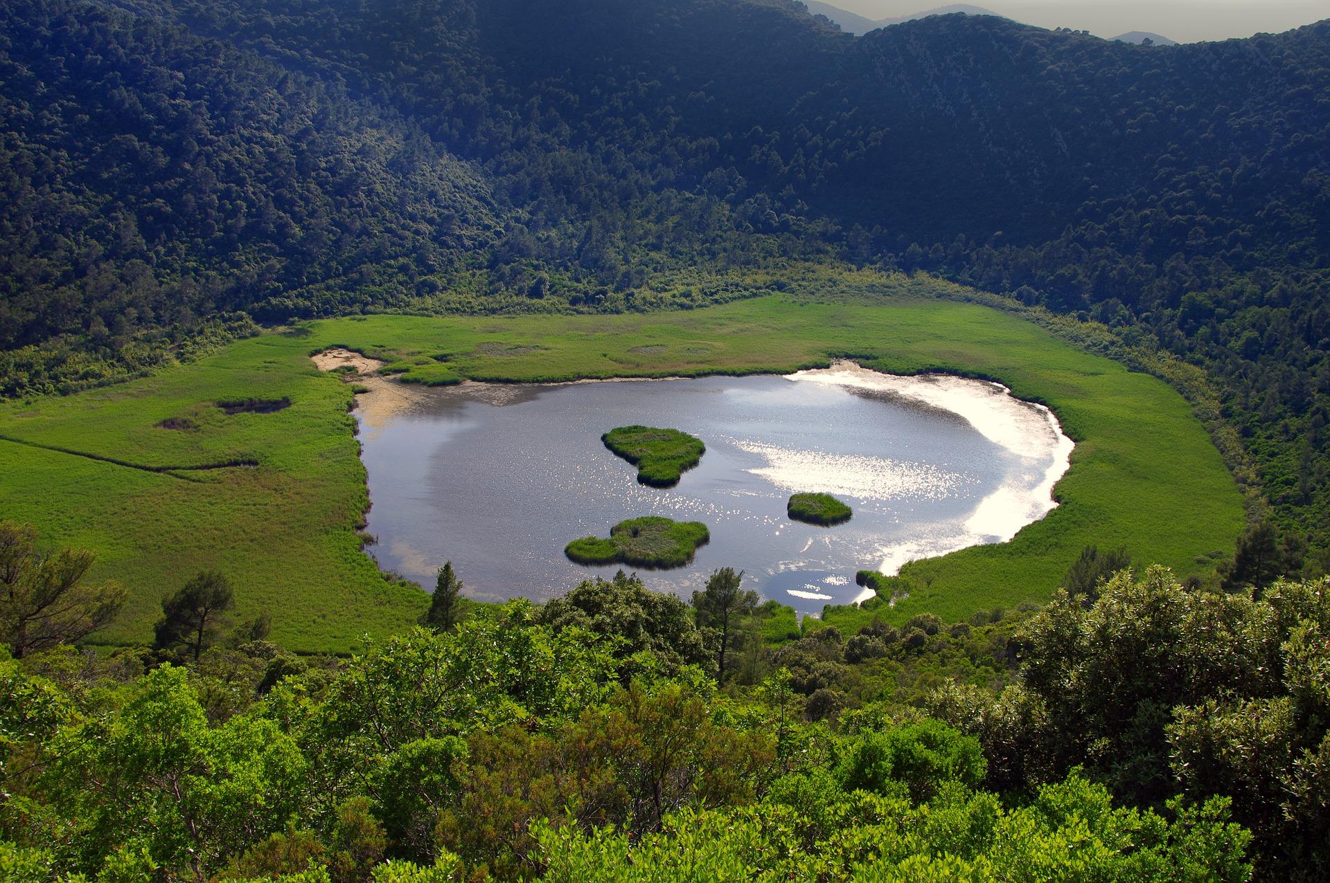 Croacia Lago Mljet Isla