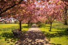 Los 5 sitios que no te debes perder en Londres