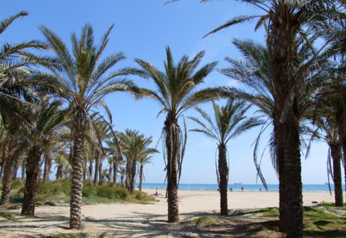Playa Pinar Castellon
