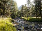 Los mejores parques nacionales para conocer en Francia