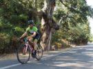 Nueve rutas ciclistas en Castellón para hacer en primavera