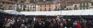 Cuatro planes para recorrer Cáceres y su provincia en otoño