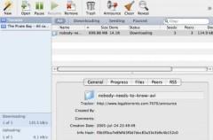 BitRocket, descargando torrents como un cohete