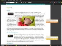 Adobe lanzó la Buzzword Preview 7