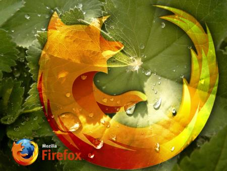 Publicado Firefox 3 Beta 3