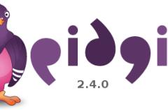 Disponible Pidgin 2.4.0