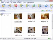 WinZip 12 disponible para descargar