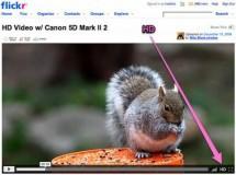 Flickr permite videos para no-PROs y videos en HD para PROs
