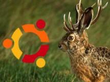 """Ubuntu 9.04 """"Jaunty Jackalope"""" Beta"""