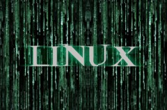 ¿Quiénes programan Linux?