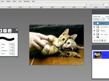 Aviary Phoenix, la mejor herramienta para edición de imágenes en la nube
