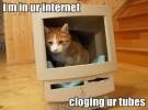 Tal día como hoy (pero hace 40 años) nació Internet