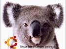 Ya puedes pedir tu copia de Karmic Koala completamente gratis