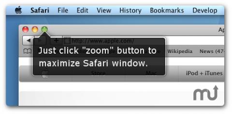 SafariZoom