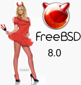 FreeBSD 8.0