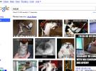 Google Images se renueva, y de qué manera