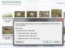 ImageResizer PowerToy Clone, resurrección de la famosa PowerToy