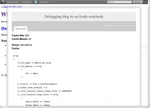 wp_admin_bar_debug1.png