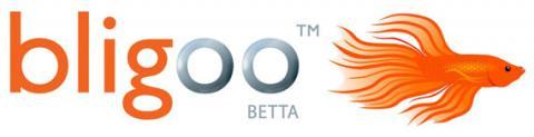 Bligoo, crea blogs, redes sociales o sitios