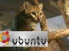 Ubuntu presenta su nueva versión 11.10